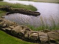 Original harbour for access to Threave Castle - geograph.org.uk - 567734.jpg
