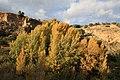 Otoño en Chelva - panoramio.jpg