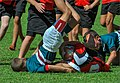 Ouch! Young Rugby players during a game.jpg