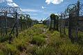 Overgrown Camp XRay, Guantanamo, circa 2007 -a.jpg