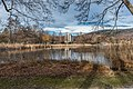 Pörtschach Halbinselpromenade Uferzone mit Schilfrohr 12012019 5987.jpg