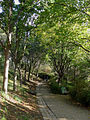 P1130674 Paris XX parc de Belleville rwk.jpg