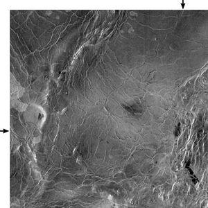 Baltis Vallis - Image: PIA00245 Baltis Vallis