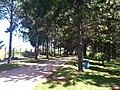 PQ da Cidade - Jundiai - SP - panoramio.jpg