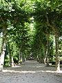 Padrón Galicia Xullo 2006 01.jpg