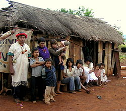 The Amazon's Guarani Indian tribe faces being wiped out by ranchers in Brazil