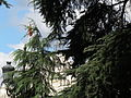 Palacio Nacional o Palacio Real20140923 0037.JPG