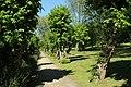 Parc de la Grande Maison à Bures-sur-Yvette le 9 mai 2017 - 48.jpg