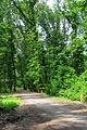 Parco di Monza - panoramio - Zhang Yuan (5).jpg