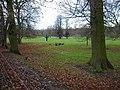 Parkland near Watford - geograph.org.uk - 1607089.jpg