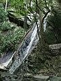 Parque Nacional El Avila 001.jpg