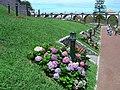 Parque da Ribeira dos Moinhos - Ribeira Grande - Portugal (59358136).jpg