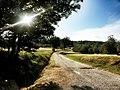 Passeggiata nella campagna di Rignano sull'Arno.jpg