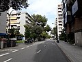 Passeig de Manuel Girona - 20200828 163747.jpg