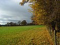 Pastures, Hambleden - geograph.org.uk - 1055823.jpg