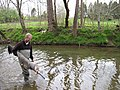 Pat rakes walking the creek (4948411441).jpg