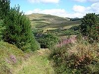 Path by Bryn-Eglwys Quarry - geograph.org.uk - 229878.jpg
