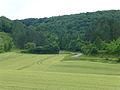Paysage autour de Vézelay (2).jpg