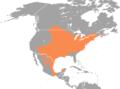 Peromyscus leucopus range map.png