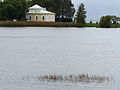 Peterhof 24 Gulf of Finland (4083032136).jpg