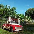 Peugeot 203 in Sainte-Anne, Guadeloupe.jpg