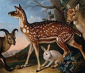 Damwild, Steinbock und Hase