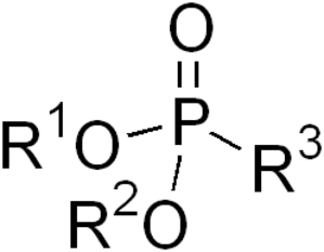 Phosphonate - General ester of phosphonic acid.