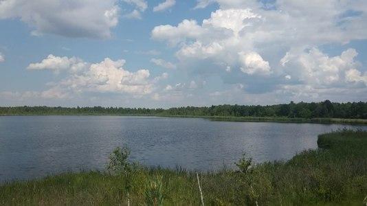 File:Pidrichchia Kamin-Kashyrskyi Volynska-Soshychne lake nature reserve in 2020.ogv