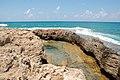 PikiWiki Israel 43693 Dor Beach.JPG