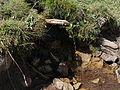 Pirin Mountain Spring Fountain.JPG