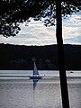 Podvečerní jachtění - panoramio.jpg