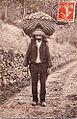 Porteur de raisin 1907 près de Rodez Aveyron.jpg