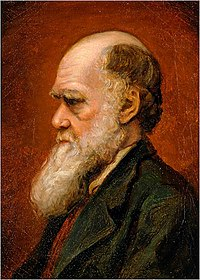 Portrait of Charles Robert Darwin, by Laura Russell, 1869.jpg