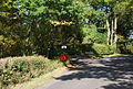Postbox, Junction of Old House Lane and Cooper's Lane - geograph.org.uk - 1549193.jpg