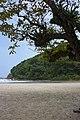 Praia da Baleia - 09-2012 - panoramio (2).jpg