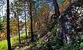 Prigorodnyy r-n, Sverdlovskaya oblast', Russia - panoramio (62).jpg