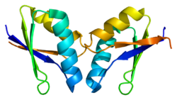 Protein ATOX1 PDB 1fe0.png