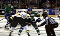 Providence Bruins vs Connecticut - face off.jpg