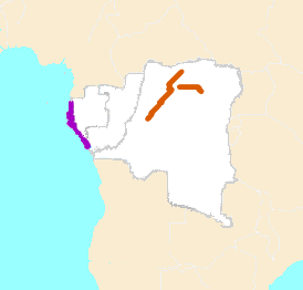 Map of west Central Africa showing highlighted range with year round range in western Gabon and Republic of the Congo and breeding range in a small portion of DRC