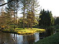 Pushkin (Tsarskoye Selo). Catherine Park. Pond system Lebyazhya islands. 1770-1774, Arch. V. Neelov.JPG