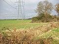 Pylon Line Marching North - geograph.org.uk - 624540.jpg