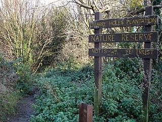 Cinderhill Human settlement in England