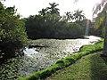 Queen Elizabeth Botanical Gardens 002.jpg