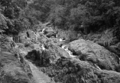 Queensland State Archives 1219 The Cascades Freshwater Valley Cairns District c 1935.png