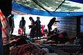 Réfugiés aux Jarinds d'Eole 10.jpg
