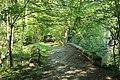 Réserve naturelle régionale des étangs de Bonnelles le 26 mai 2017 - 45.jpg