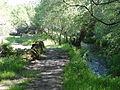Río Lérez (Pontevedra, Galicia, España) 02.JPG