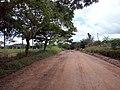 RO-133 Novo Riachuelo-RO Distrito Presidente Médice-RO - panoramio.jpg