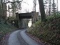 Railway bridge on disused line. - geograph.org.uk - 653448.jpg