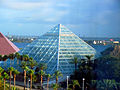Rainforest Pyramid Moody Gardens.jpg